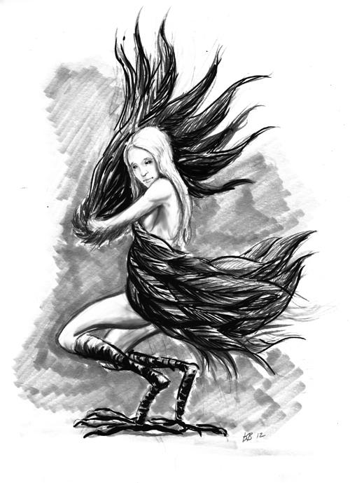 Raven-web.jpg